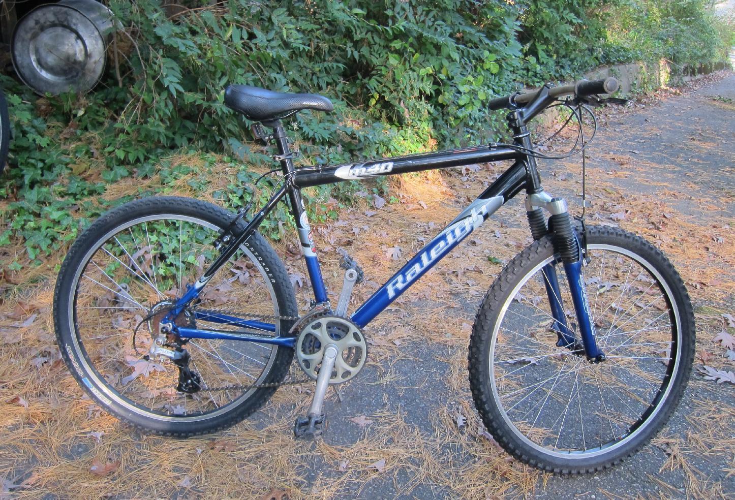 Raleigh Discovery Bike